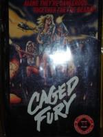 Caged Fury Gr. Hartbox Gr. Hardbox sehr stark limitiert 33St