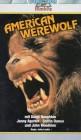 American Werewolf (29445)