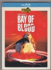 Im Blutrausch des Satans - Mediabook 500