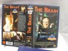 1917 ) The Brain