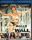 BALLS TO THE WALL Blu-ray - sehr witzige Stripper Komödie