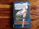 DAS CAMP DES GRAUENS - VHS