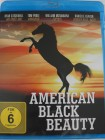 American Black Beauty - Mädchen auf Pferde Farm - Tierfilm