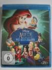 Arielle die Meerjungfrau - Wie alles begann Disney Animation