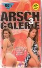 Arsch Galerie 3 (31048)