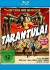 Tarantula ( OVP )