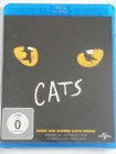 Cats - Musical Kult Andrew Lloyd Webber - Erfolg am Broadway