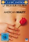 American Beauty DVD Gut
