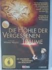 Die Höhle der vergessenen Träume - Werner Herzog, Chauvet