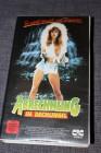 VHS - ABRECHNUNG IM DSCHUNGEL Gator Bait 2 Rape & Revenge