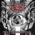 彡V.A. - Voices of the Underground #13 (Nordwind)