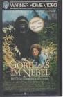 Gorillas im Nebel (31484)