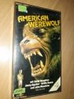 AMERICAN WEREWOLF Spectrum GLASBOX VHS SELTEN!!!
