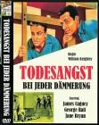 TODESANGST BEI JEDER DÄMMERUNG  Klassiker  1939