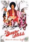 Sugar Hill - Herrin der schwarzen Zombies!! Edle Buchbox!!