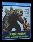 Frankenstein und die Ungeheuer aus dem Meer Blu-ray Amaray