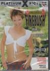 Firebush 2 (34703)