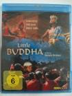 Little Buddha - Keanu Reeves, Bridget Fonda, Bertolucci