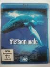 Mission Wale - Das Leben - Cape Farewell - Atlantik Walfang