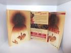 Wicked Vision Mediabook - Die Brut