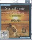 Symphonie der Wildnis (36441)