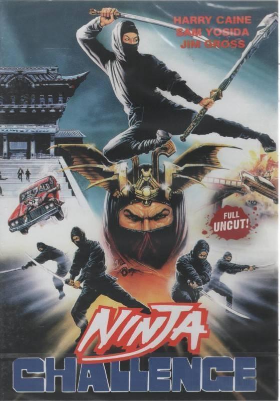 Ninja Challenge (36599)
