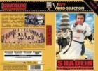 Shaolin - Die tödliche Vergeltung - gr. lim. Hartbox - AVV