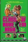 Class of Nuke Em High 1 - Cover A - gr. Buchbox Nr. 180/222