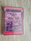 Evil Dead / Extended Cut / Börsen-DVD