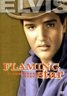 Flammender Stern - Elvis Presley dt Selten!