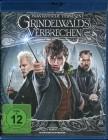 Phantastische Tierwesen: Grindelwalds Verbrechen (Blu-ray)