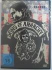 Sons of Anarchy  Season 1 - gesetzloser Biker Club - Perlman
