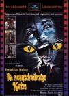 DVD Die neunschwänzige Katze (Astro) limited 333