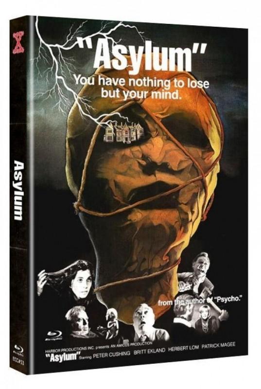 Asylum - Irrgarten des Schreckens 2-Disc Mediabook Cover A