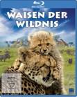 Waisen der Wildnis (Blu-ray) (NEU) ab 1€