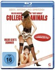 College Animals - Special Uncut Version