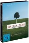 Six Feet Under - Gestorben wird immer - Staffel 2