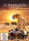 Serengeti - Fotosafari (NEU) ab 1€