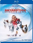 Disney Antarctica - Gefangen im Eis