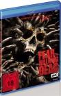 Fear the Walking Dead - Staffel 2 - uncut (Blu Ray)