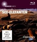 Discovery HD Sunrise Earth See-Elefanten (Blu-ray) NEU ab 1€