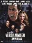 An jedem verdammten Sonntag (Pacino) -Directors Cut- 2 DVDs