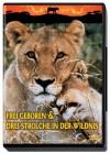 Frei Geboren & Drei Strolche in der Wildnis - DVD