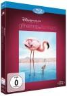 Disney Das Geheimnis der Flamingos