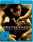 Brotherhood - Blu-ray - Steelbook