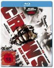 The Crows Are Back - Crows Zero II (Blu-ray) NEU ab 1€
